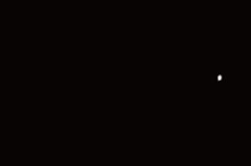Atelier minimal cow